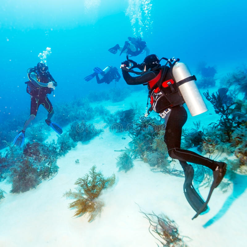 Dykare Takes Photos Underwater arkivbilder