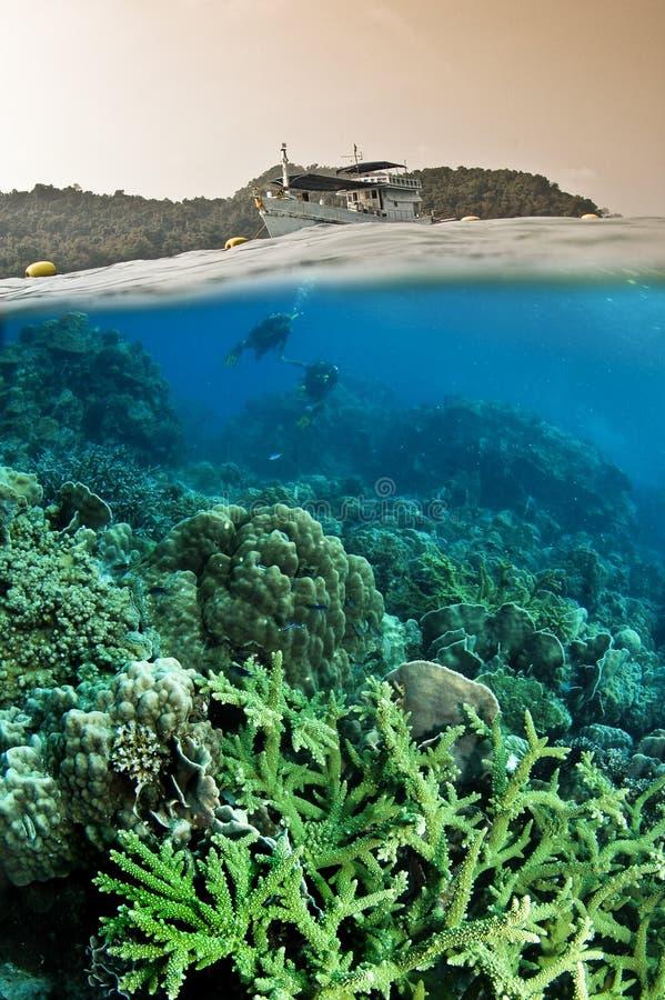 dykarehav över under arkivfoto