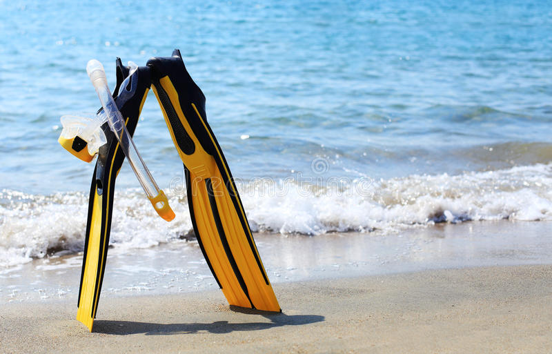 Dykningmaskering, snorkel och fenor på en strand royaltyfri foto