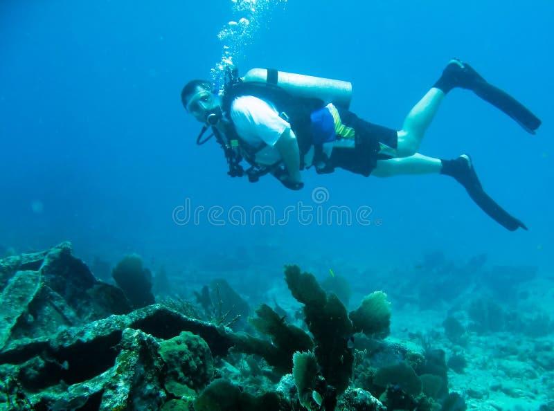 dykningscuba royaltyfri foto