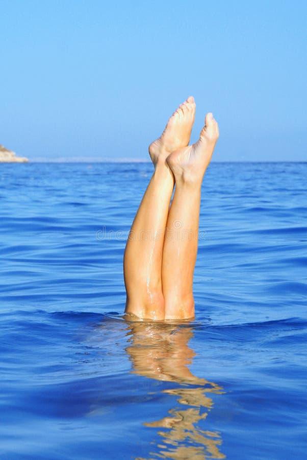 dykningsommarsemester royaltyfria foton