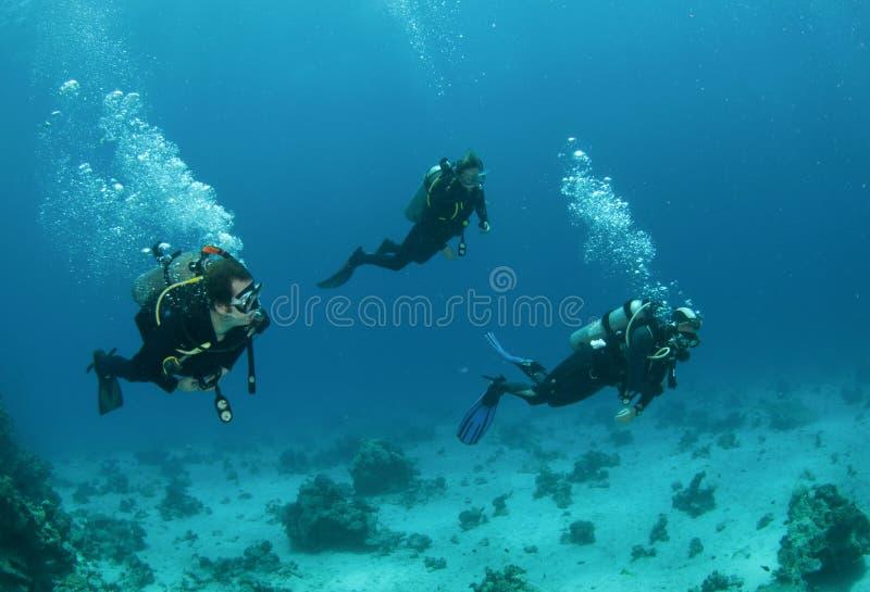 dykningvänscuba tre tillsammans arkivbild