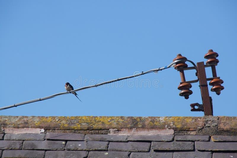 Dymówka na dachu zdjęcia stock