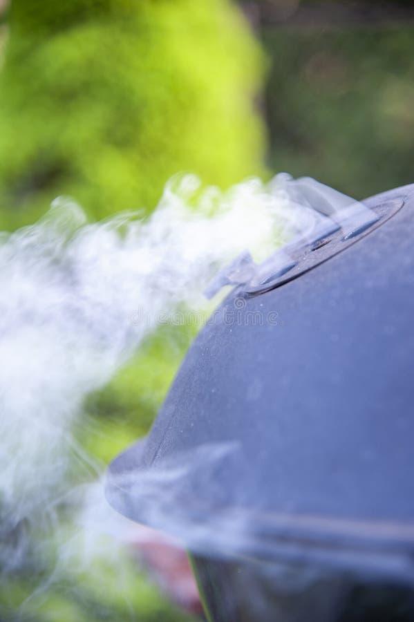 Dymić grilla na ogródzie na lato słonecznym dniu obraz stock