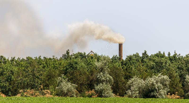 Dymi przeciw zielonym drzewom, lotnicze emisje od przemysłowej drymby Zanieczyszczenie środowisko, brudny przemysłowy ćmi od fact obrazy stock