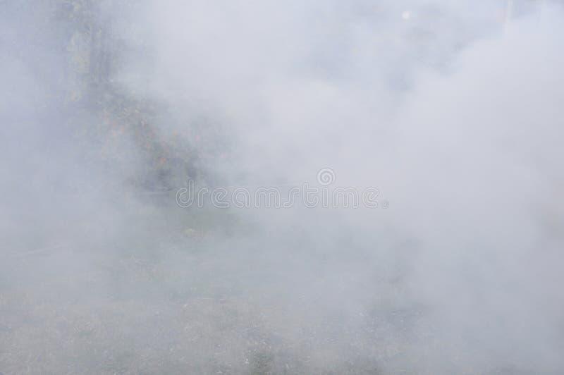 Dymny tło, bielu dym jak chmury tło obraz royalty free