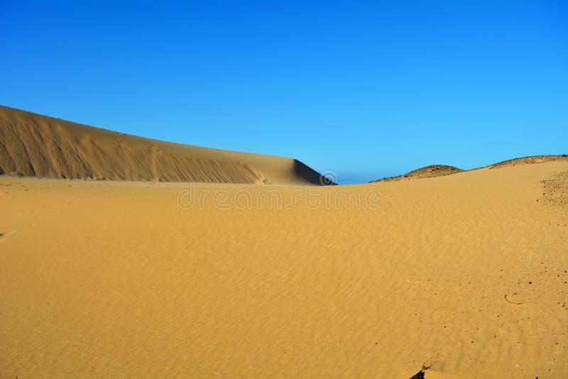 Dyn av Corralejo, Fuerteventura, kanariefågelöar, Spanien arkivfoton