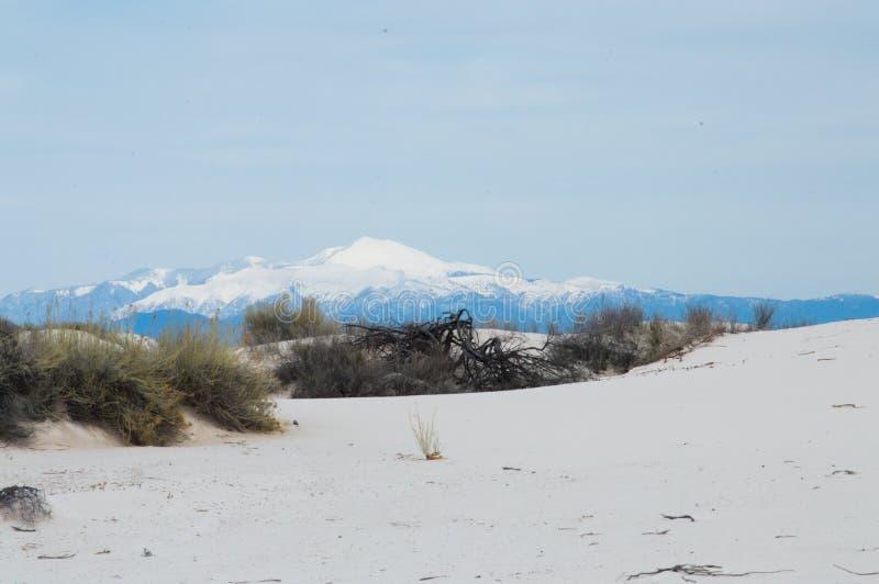 Dyn av den nationella monumentet för vita sander arkivbild