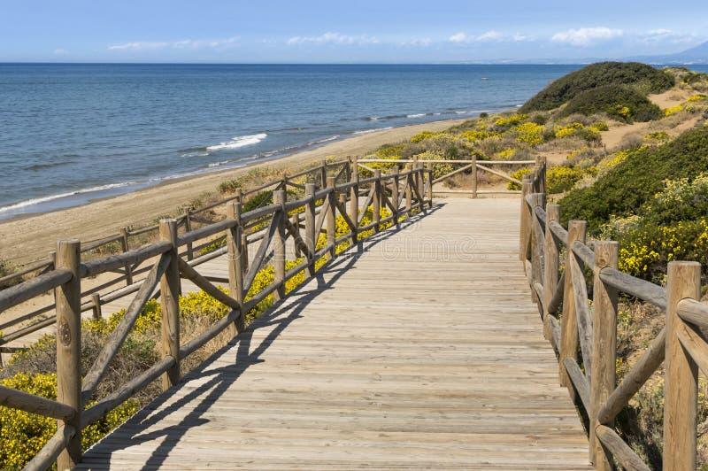 Dyn av den naturliga reserven för artola som lokaliseras i Cabopino Marbella Costa del Sol Malaga Spain royaltyfri bild