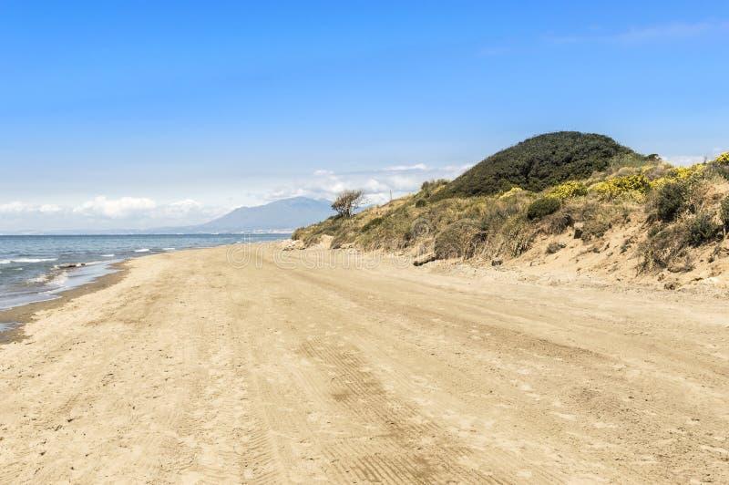 Dyn av den naturliga reserven för artola som lokaliseras i Cabopino Marbella Costa del Sol Malaga Spain royaltyfria bilder