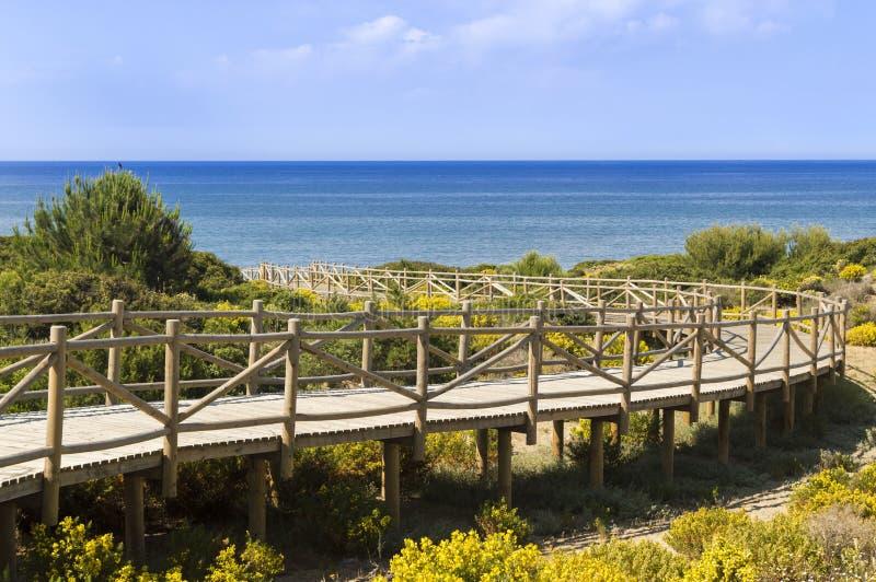 Dyn av den naturliga reserven för artola som lokaliseras i Cabopino Marbella Costa del Sol Malaga Spain arkivfoton