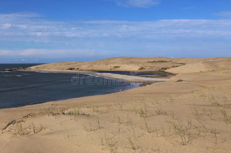 Dyn bakom av Barra de Valizas - Uruguay royaltyfri bild