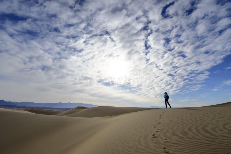Dyn i Death Valley royaltyfri bild