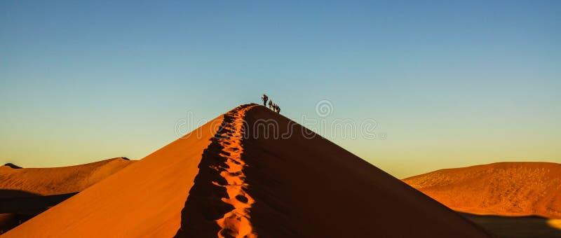 Dyn 45 i den namibiska öknen arkivfoton
