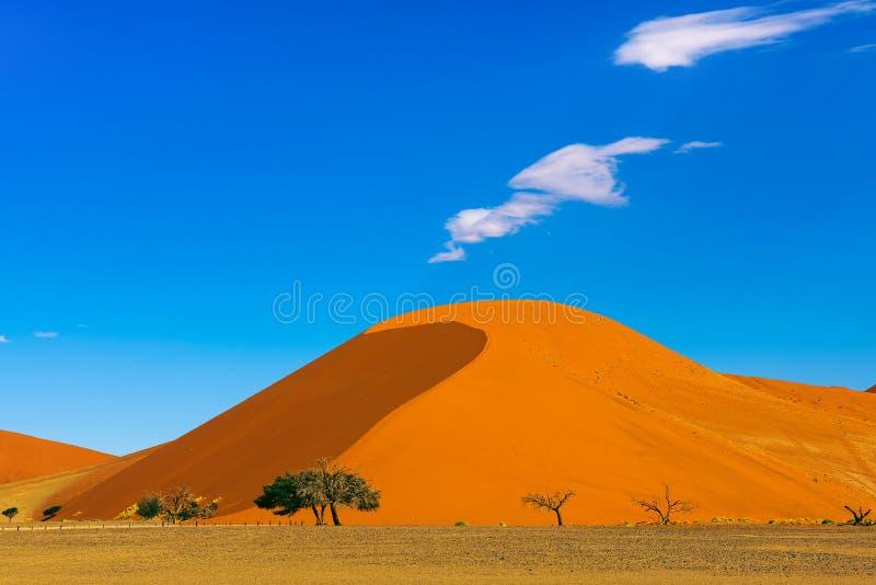 Dyn 40 i Sossusvlei, Namib Naukluft nationalpark, Namibia royaltyfria bilder