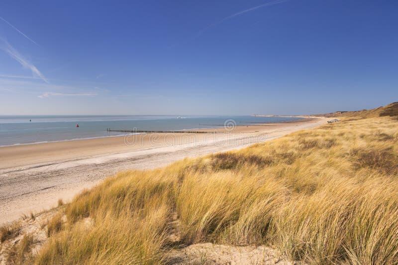 Dyn på kusten av Dishoek i Nederländerna arkivbilder