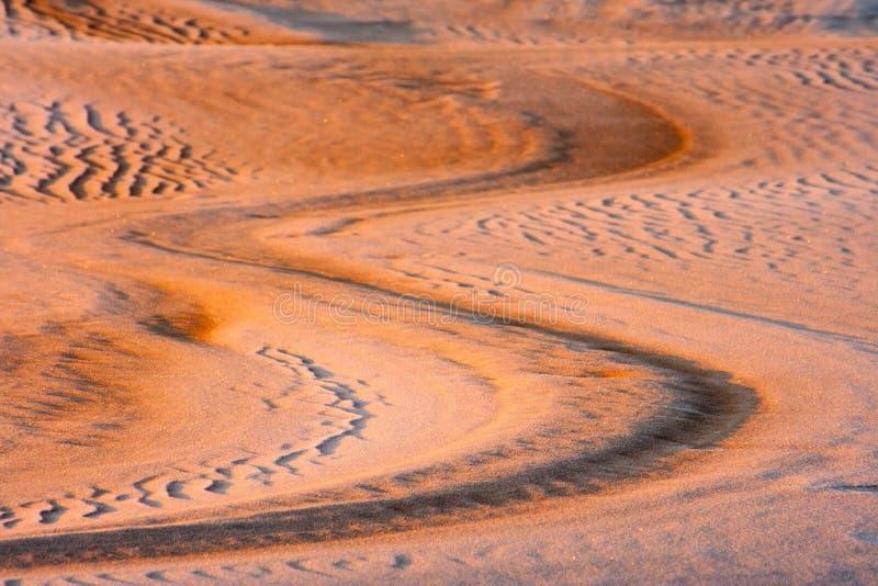 Dyn på soluppgånglandskapet royaltyfri foto