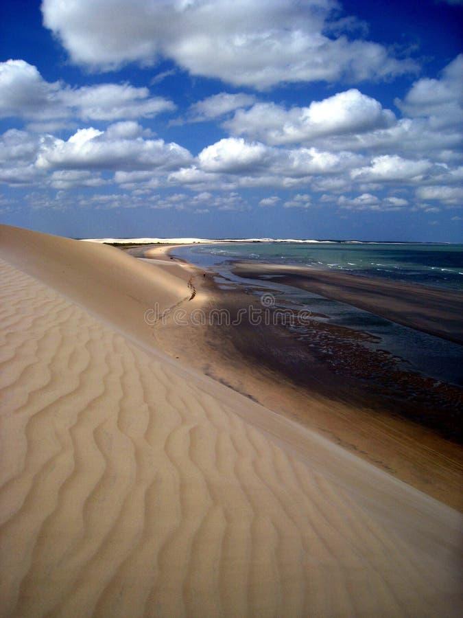 Dyn på stranden Jericoacoara Brasilien royaltyfri bild