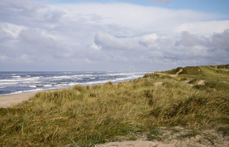 Dyn, strand och hav royaltyfria bilder