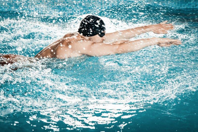 Dynamisk och färdig simmare royaltyfri fotografi