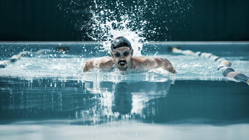 Dynamisk och färdig simmare i lockandning som utför fjärilsslaglängden arkivbilder