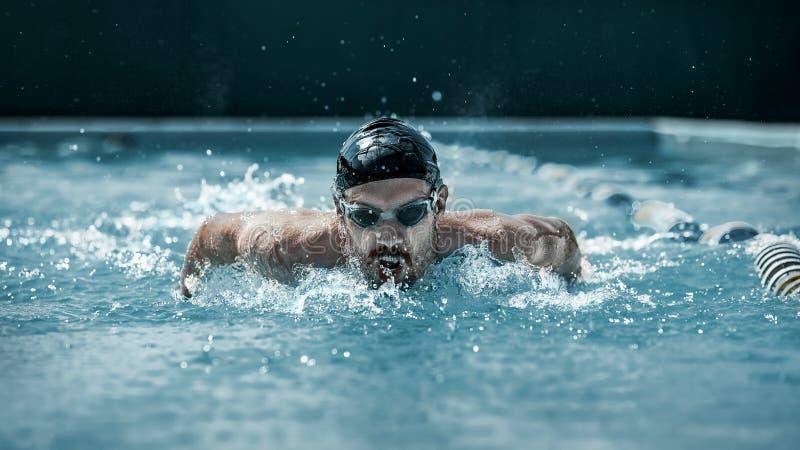 Dynamisk och färdig simmare i lockandning som utför fjärilsslaglängden royaltyfri fotografi