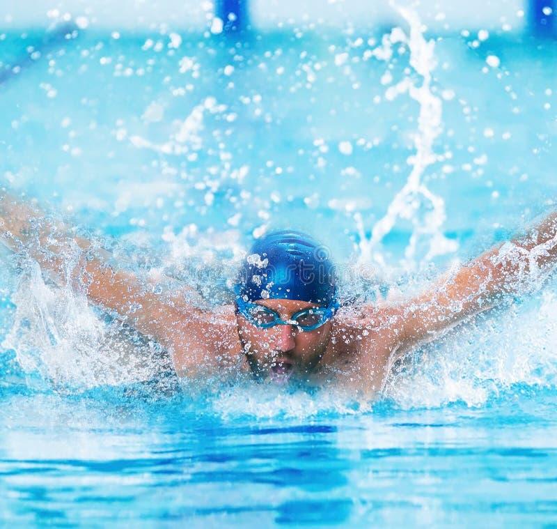 Dynamisk och färdig simmare i lockandning som utför fjärilsslaglängden royaltyfri bild