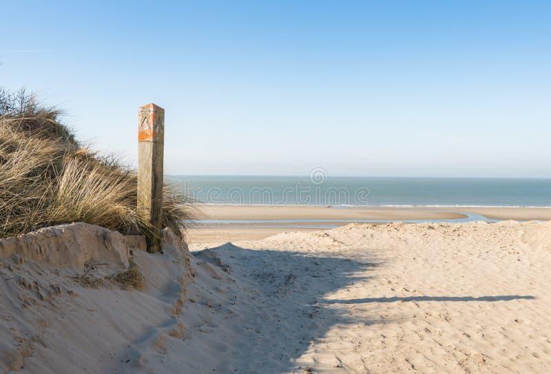 Träpol i en dyn på stranden arkivbilder