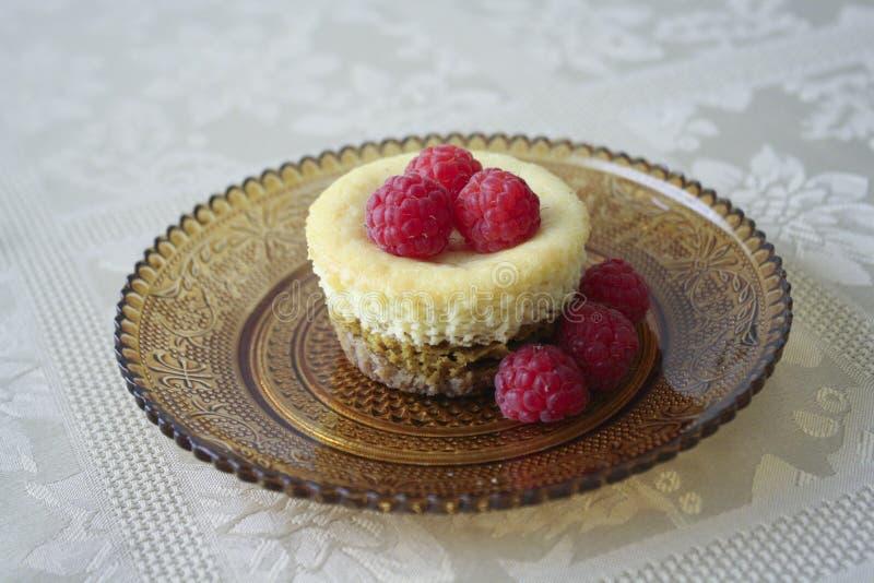Dyniowego kulebiaka Cheesecake zdjęcie stock