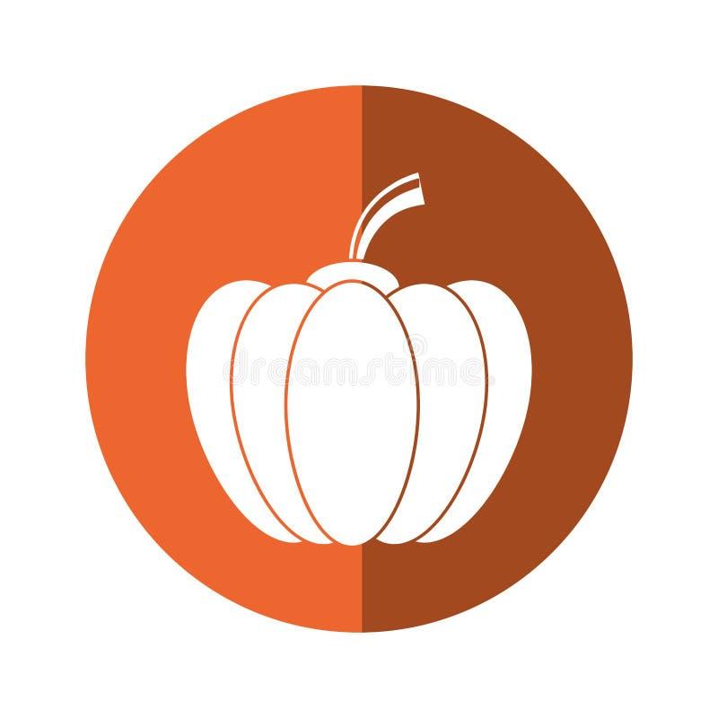 Dyniowej żniwo słodkogórzkiej jarzynowej ikony pomarańczowy okrąg royalty ilustracja