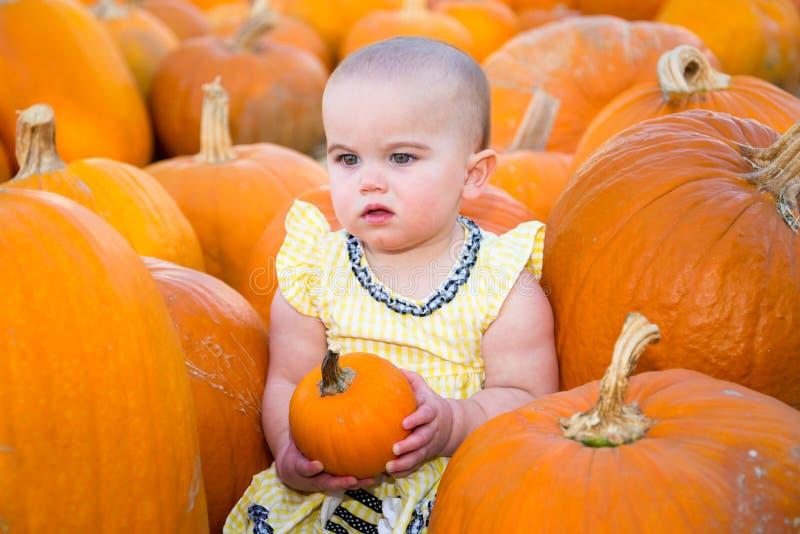 Dyniowy łaty dziecko patrzeje nieporuszony fotografia stock
