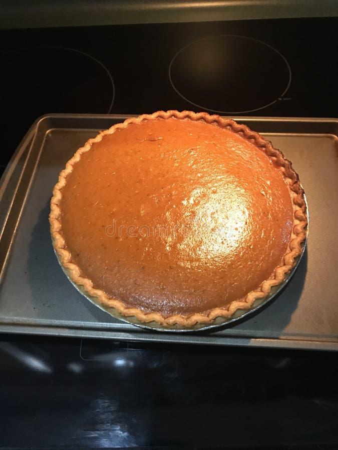 Dyniowy kulebiak świeży out piekarnik obraz stock