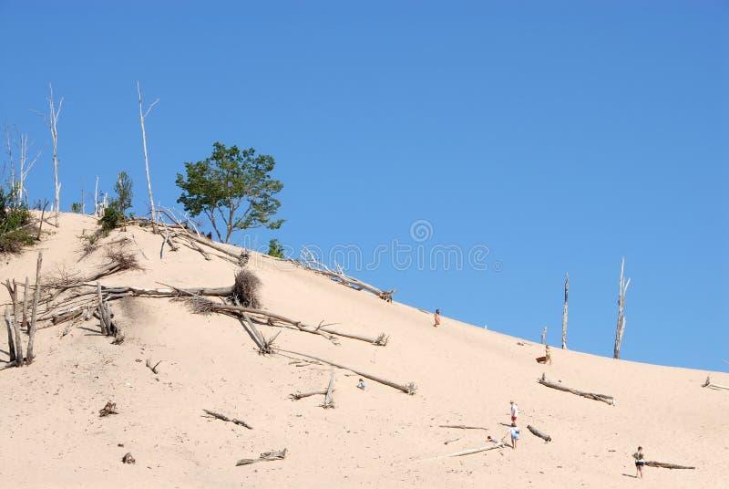 Download Dynlake michigan arkivfoto. Bild av shoreline, dött, fallet - 980112