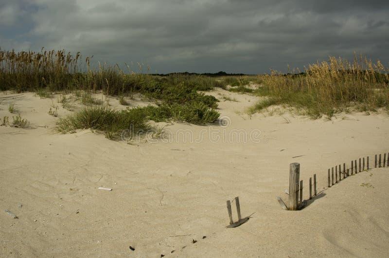 Download Dynsand fotografering för bildbyråer. Bild av sommar, staket - 275309