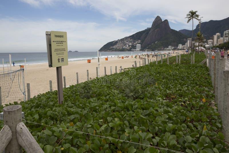 Dynskydd i den Ipanema stranden Rio de Janeriro royaltyfri bild