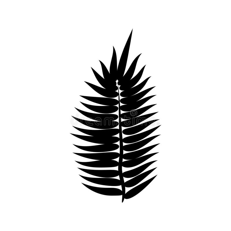 Dypsis for decorative design. Isolated sign symbol. Isolated vector illustration. Summer tropical leaf of dypsis. Natural plant. Symbol. Vector background vector illustration