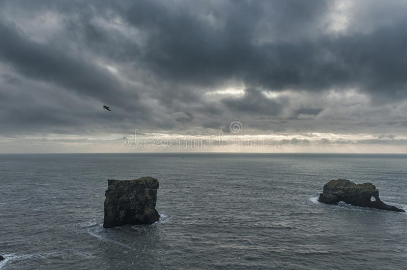 Dyrholaey Area in Iceland. Close to Black Sand Beach. Sunrise. Flying Bird and Rock in Background. stock images