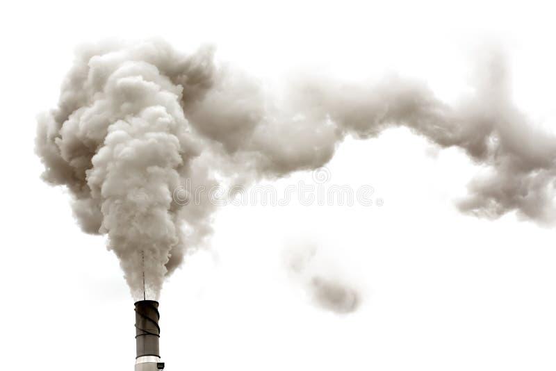 Dyrty Rauch getrennt stockbilder