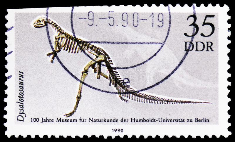 Dysalotosaurus lettow-vorbecki, 100 Years Museum Of Natural History, Humboldt University, Berlin, serie, circa 1990. MOSCOW, RUSSIA - MARCH 30, 2019: A stamp royalty free stock photography