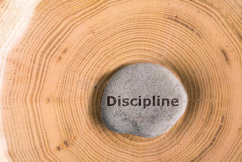 Dyscyplina w kamieniu na drzewie obrazy royalty free