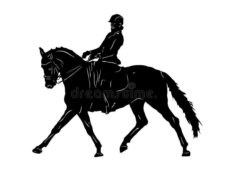 dyscyplinuje dressage ubierającego equestrian formalności gemowego końskiego horsewoman wizerunku olimpijskiego realistycznego sp royalty ilustracja