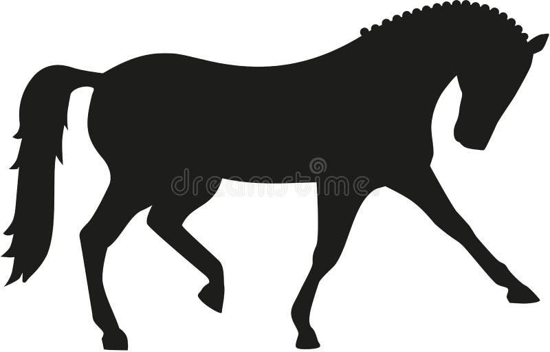 dyscyplinuje dressage ubierającego equestrian formalności gemowego końskiego horsewoman wizerunku olimpijskiego realistycznego sp ilustracji