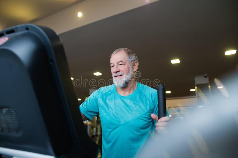 Dysponowany starszy mężczyzna w gym robić cardio opracowywał obrazy stock