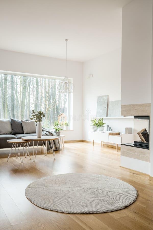 Dywanik w przestronnym mieszkania wnętrzu zdjęcie royalty free