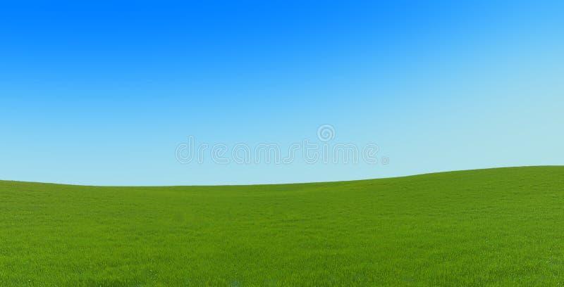 dywanowi zieleni wzgórza zdjęcia stock