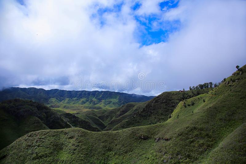 Dz�kou Valley. Border of the states of Nagaland and Manipur, India. Dzukou Valley. Border of the states of Nagaland and Manipur, India. Well known for its stock image