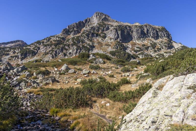 Dzhangal piek nabij Popovo Lake, Pirin Mountain, Bulgarije stock foto
