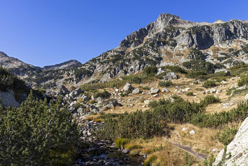 Dzhangal piek nabij Popovo Lake, Pirin Mountain, Bulgarije royalty-vrije stock afbeelding