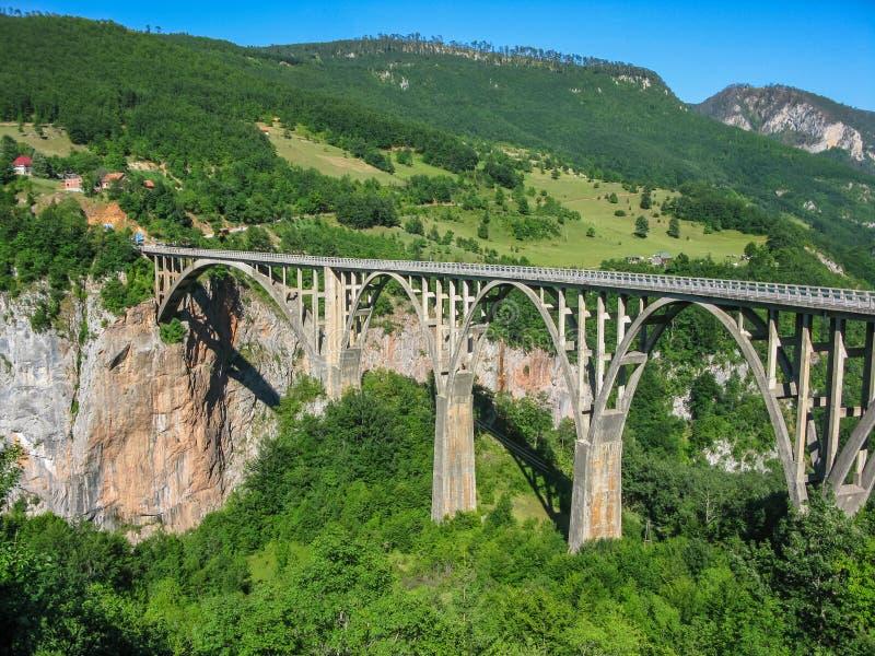 Dzhurdzhevich桥梁-具体曲拱河上的桥黑山的北部的塔拉 库存图片