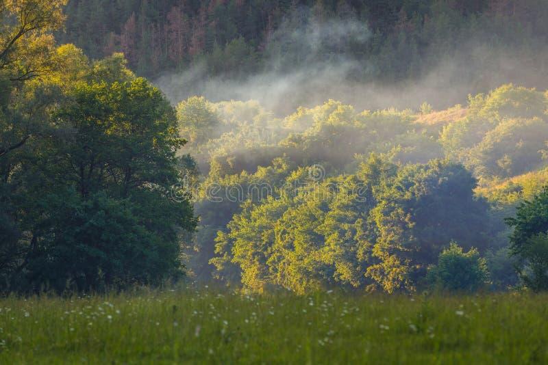 Dzhuryn River Valley stockbild